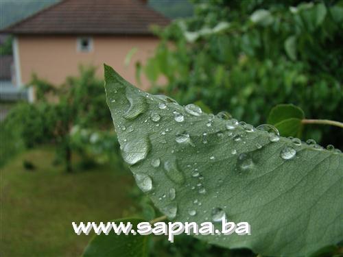 Pregedate slike iz članka: Cjelodnevne kiše
