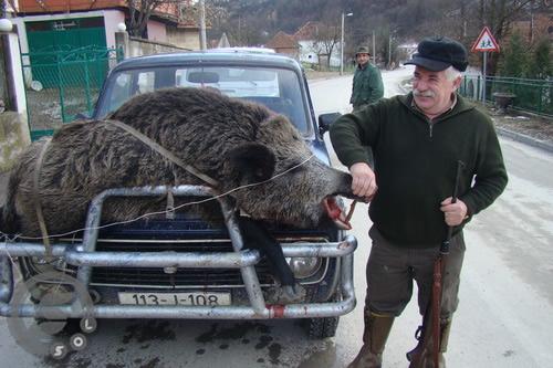 Pregedate slike iz članka: Uspješan lov