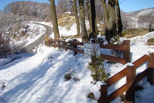 Pregedate slike iz članka: Snijeg tačan ko švicarski sat!